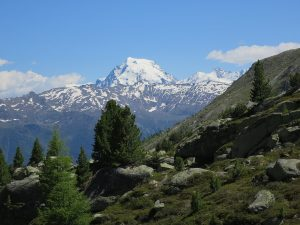 S-charljöchl Pass, Cruschetta Pass, Ortler mountain Italy