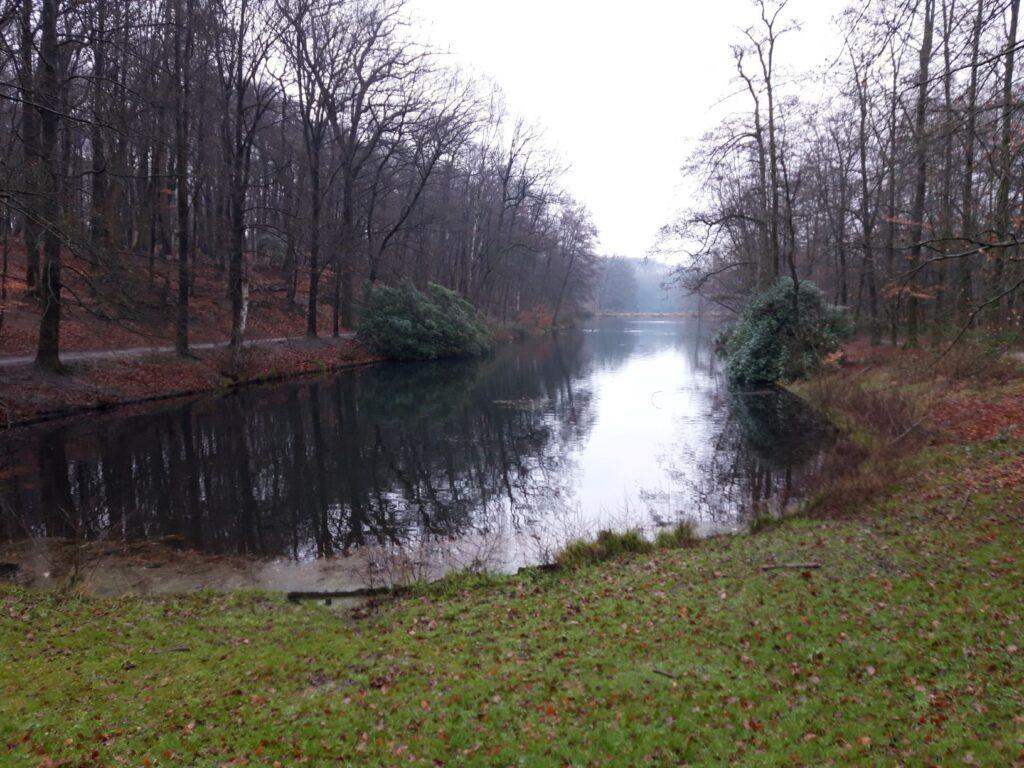 20201229_135217 (2) - Arnhem - Park Zijpendaal - Gouverneurshuisje - uitzicht over vijver - beukenbos - mistig weer