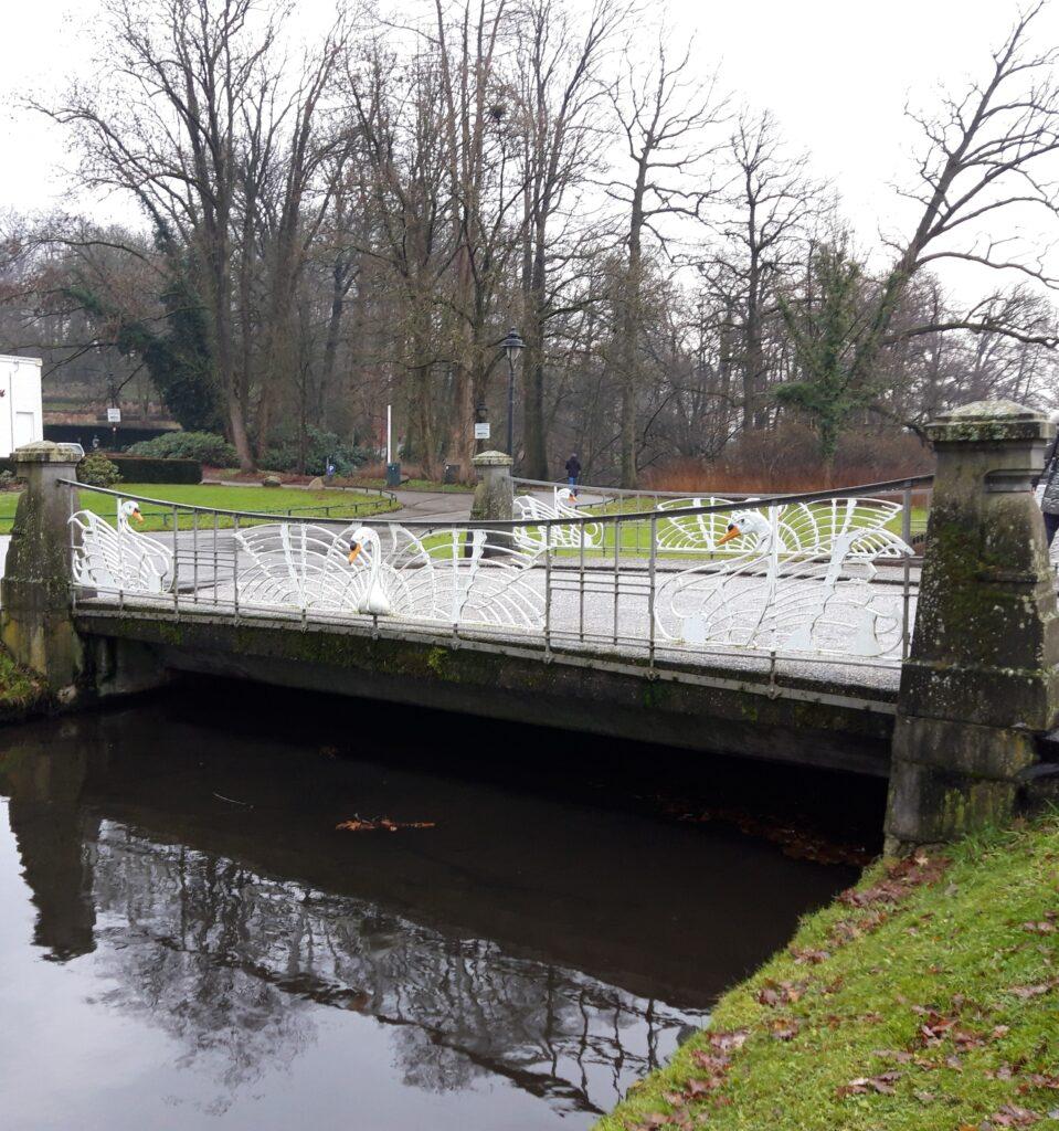20201229_143126 (2) - Arnhem (NL) - Park Sonsbeek - St. Jansbeek - Zwanenbrug - gestileerde knobbelzwanen - Art-Nouveau stijl
