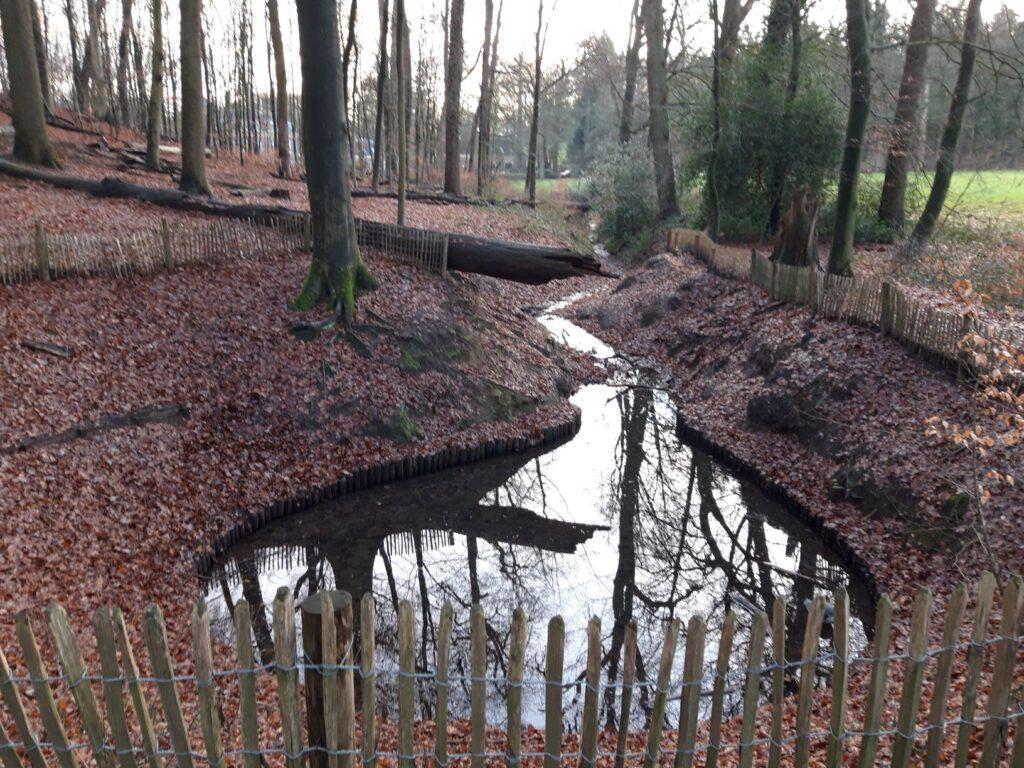 20210108_155612 (2) - Arnhem (NL) - Park Zijpendaal - beukenbos - sprengkop - St. Jansbeek