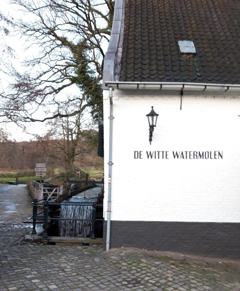 20210108_163436 (2) - Arnhem (NL) - Park Sonsbeek - St. Jansbeek - korenwatermolen - Witte Molen (1583) - molenrad