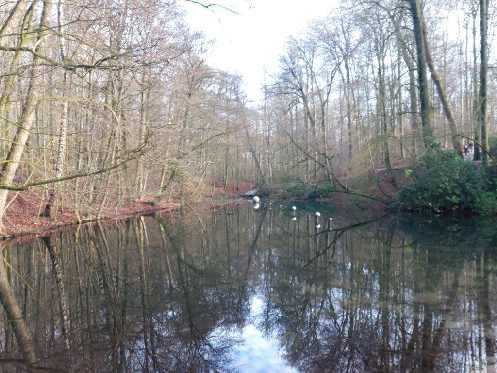 20210110_133510 (2) - Arnhem (NL) - Park Sonsbeek - Koude Vijver - kunst in landschap - Henriëtta Lehtonen (Finland 1965) - Skies Captured 2001