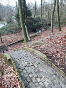 20210110_144602 (2) - Arnhem (NL) -Park Sonsbeek - St. Jansbeek - watergoot op berghelling - beukenbos