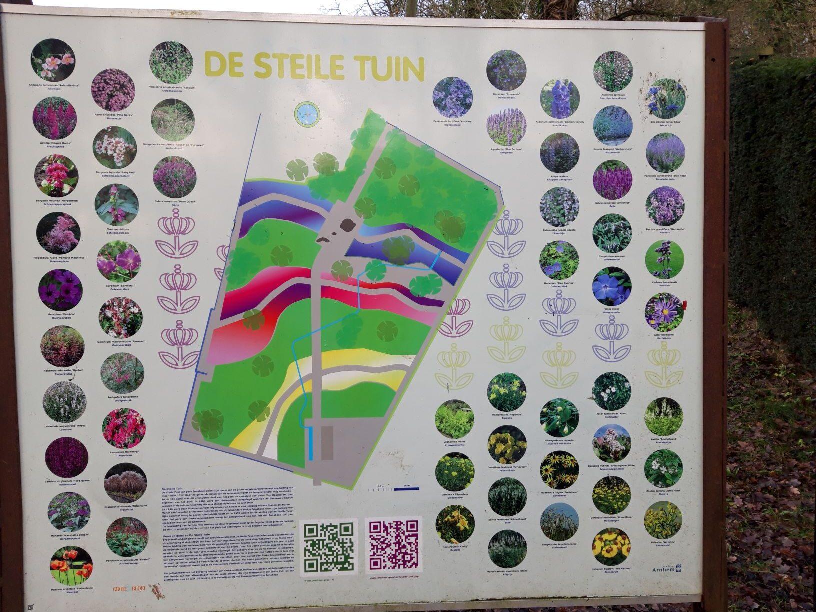 20210110_145539 (2) -Arnhem (NL) - Park Sonsbeek - De Steile Tuin - 100 jarig bestaan Sonsbeek - oude moestuin - kleurrijk beplantingsplan - Vereniging 'Groei en Bloei' afdeling Arnhem e.o.